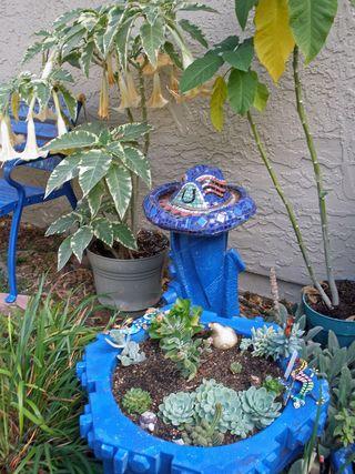 Blue-succulent-garden-3