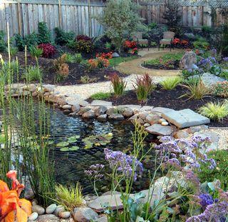 Vetter Pond View