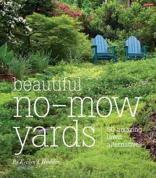 Beautiful Nomow Yards