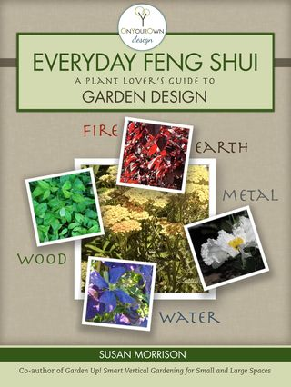Feng Shui cover 2nd jpeg