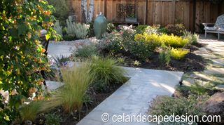 Carla's garden 2