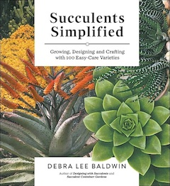 Succulents simplifiedcover