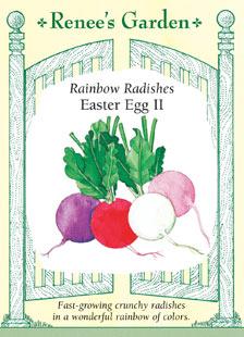 Radish-easteregg-f