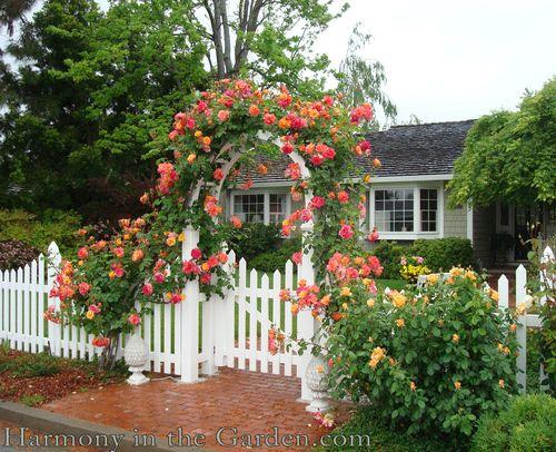 Blue Planet Garden Blog Front Yard Design Strategies
