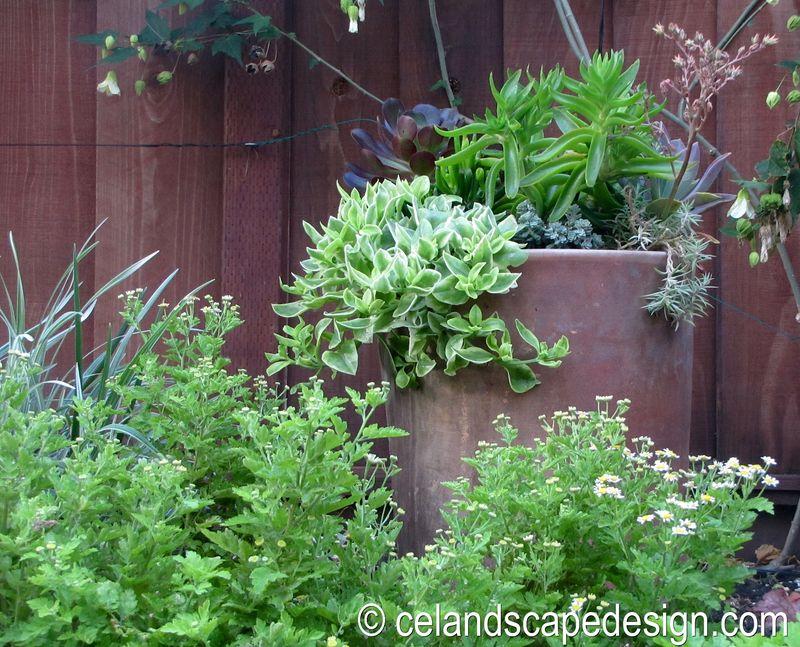 Small Space Garden Design 11