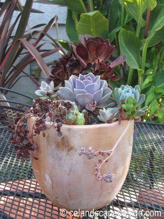 Small Space Garden Design 10