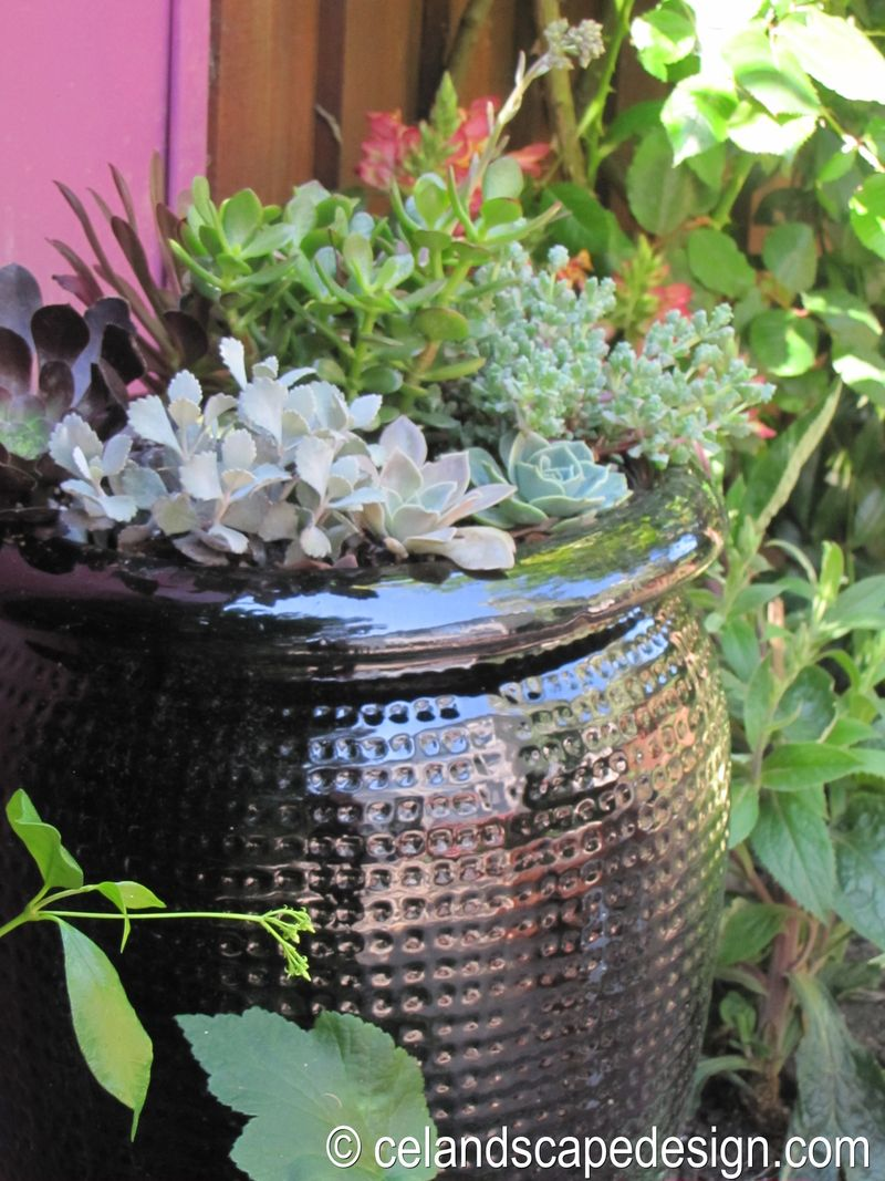 Small Space Garden Design 8